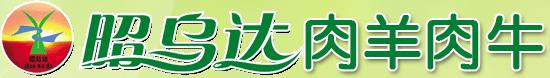 中国生态肉羊养殖基地